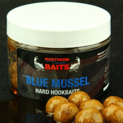 NORTHERN BAITS Blue Mussel Glugged hookbaits 16mm